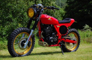 Unique Honda Dominator NX650 custom project